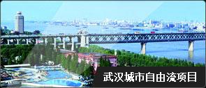 武汉城市自由流项目